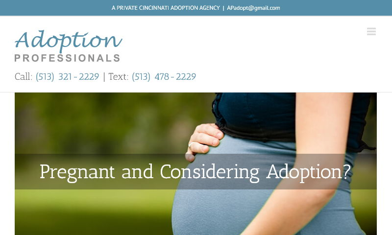 adoptionprofessionals.net