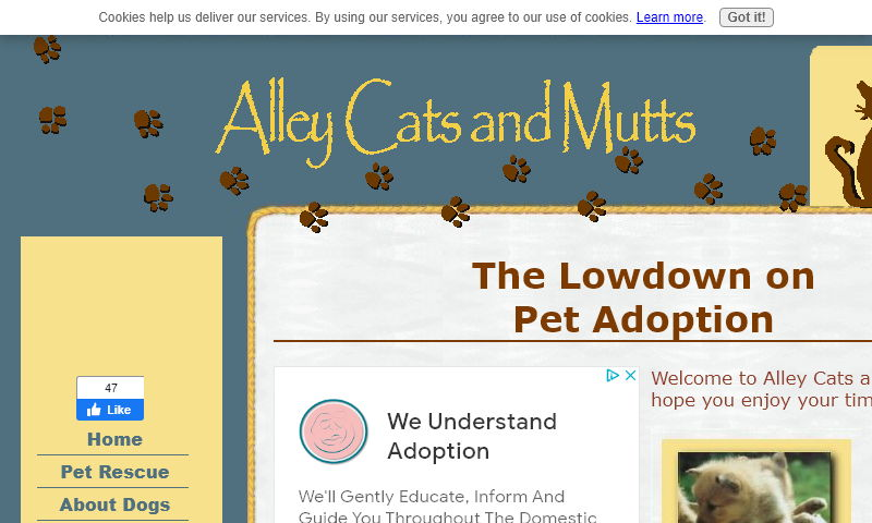 www.alley-cats-and-mutts-adoption.com