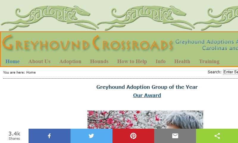 beachboundhounds.org