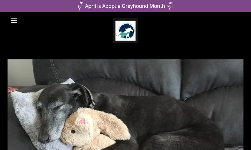 bluegrassgreyhoundadoption.com.jpg