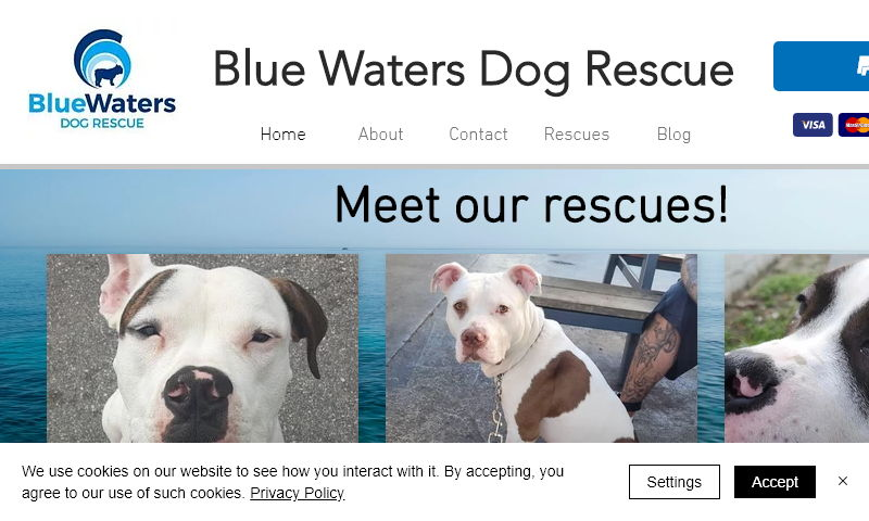 bluewatersrescue.com