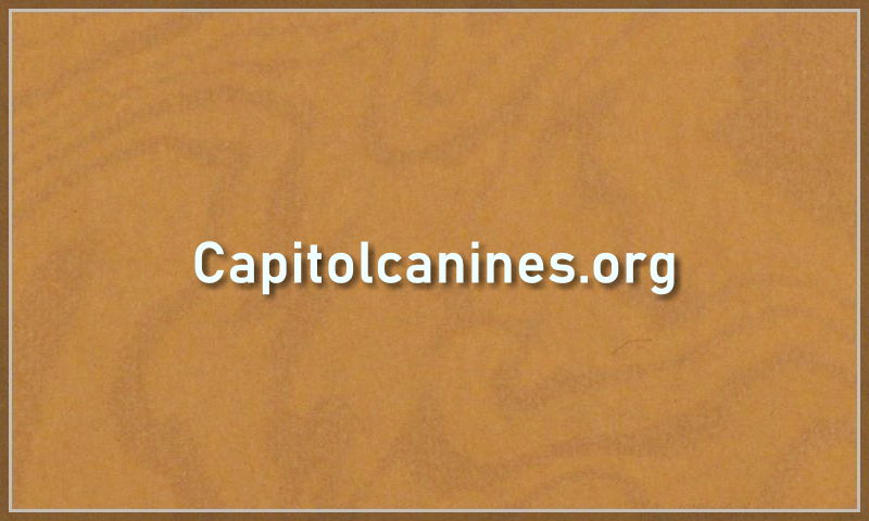 capitolcanines.org