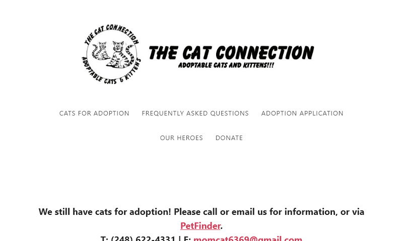 catconnection.org