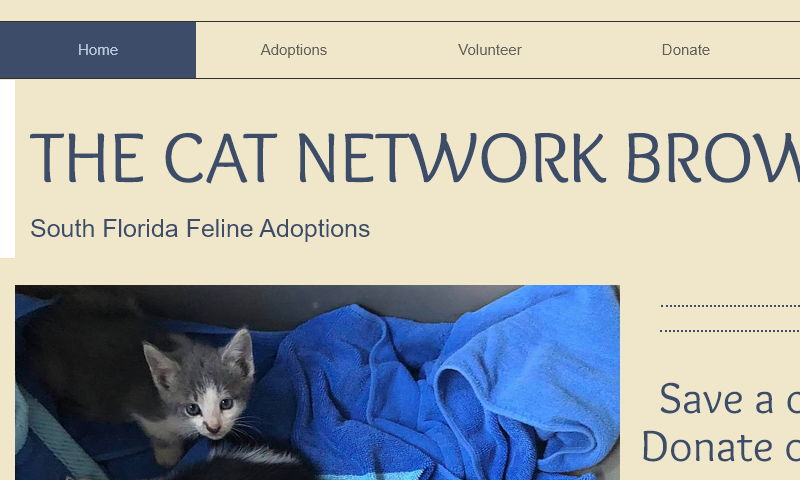 catnetworkbroward.org
