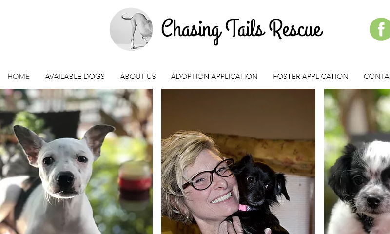 chasingtailsdogrescue.com