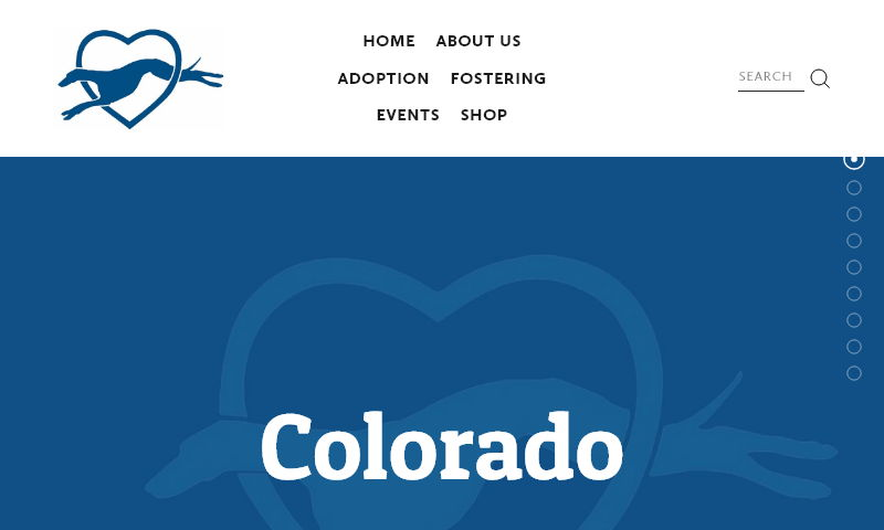 coloradogreyhoundadoption.com