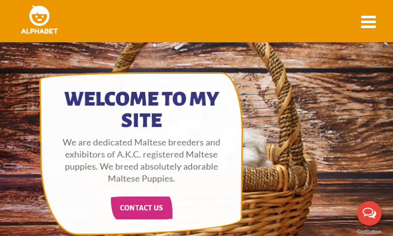 darlingtonmaltesepuppies.com