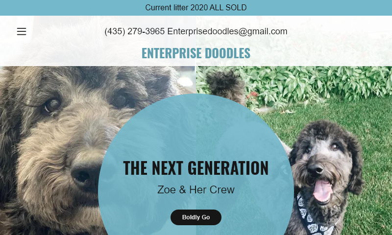 enterprisedoodles.com