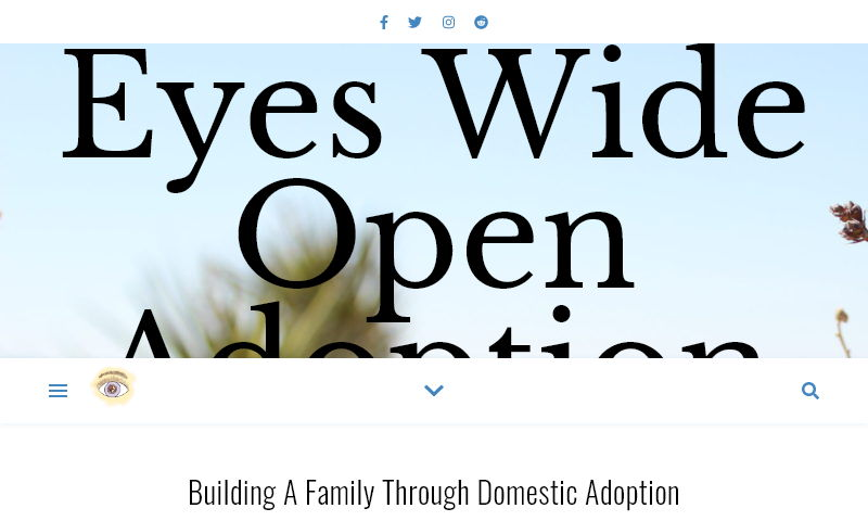 eyeswideopenadoption.com.jpg