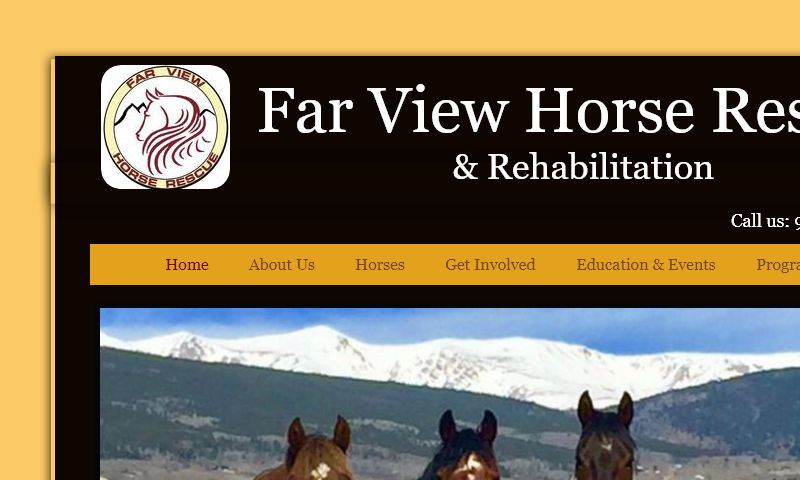 farviewhorserescue.com
