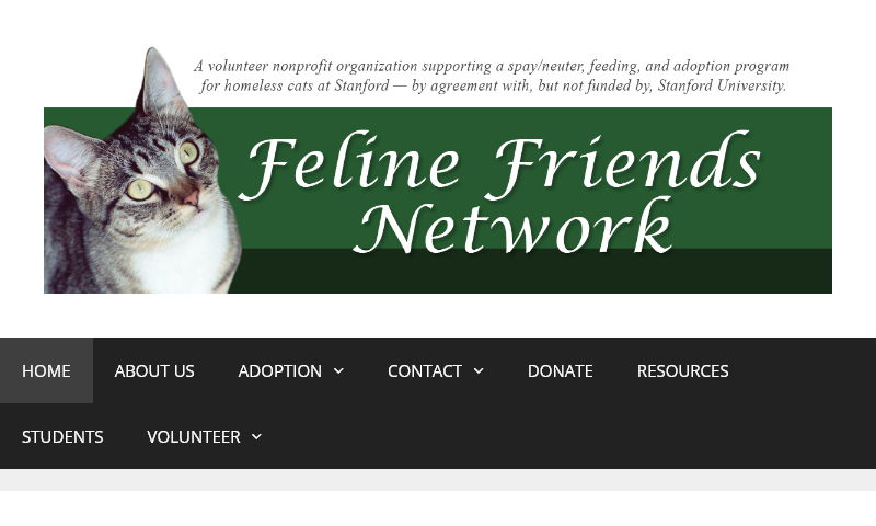 felinefriendsnetwork.org