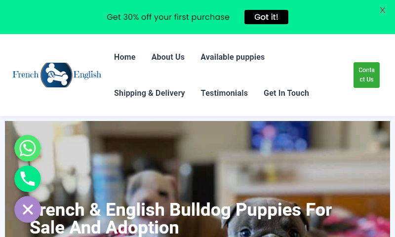 frenchandenglishbulldogpup.com