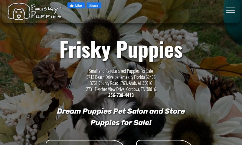 friskydreampuppies.com