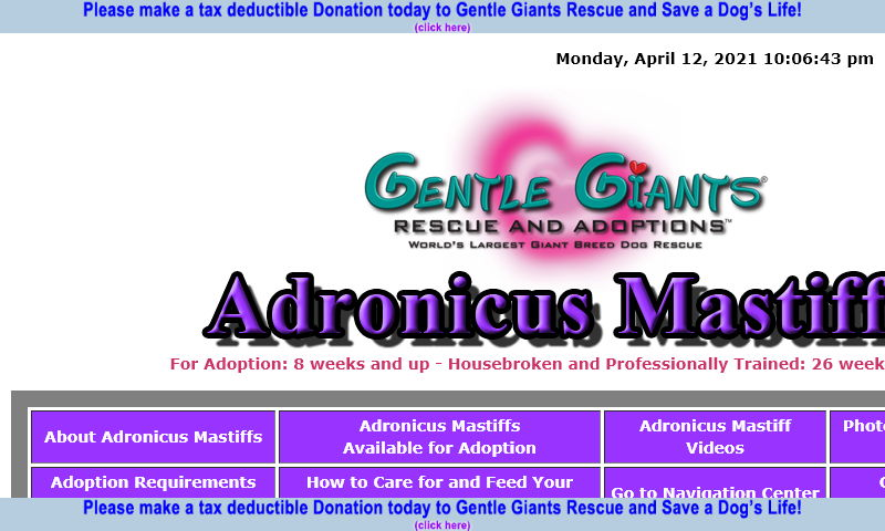 gentlegiantsrescue-adronicus-mastiffs.com.jpg