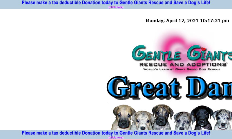 gentlegiantsrescue-great-danes.com
