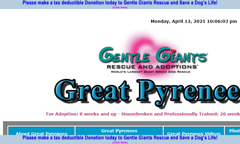 gentlegiantsrescue-great-pyrenees.com