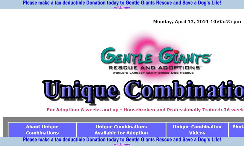 gentlegiantsrescue-unique-combinations.com