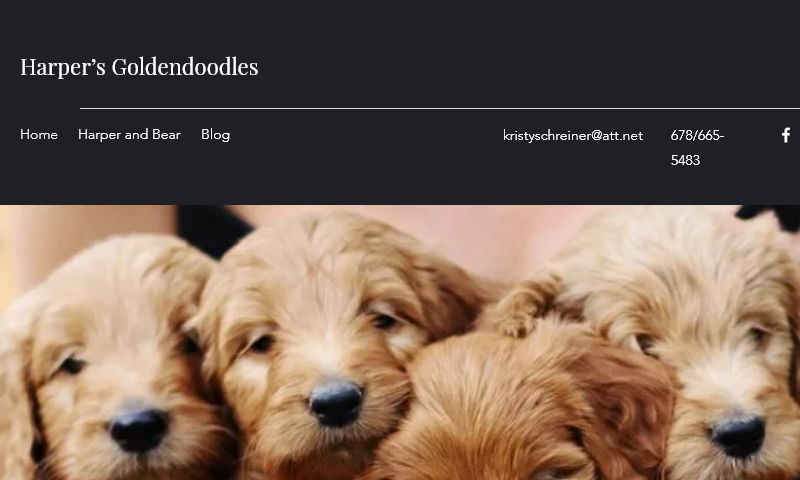 goldendoodleperfection.com