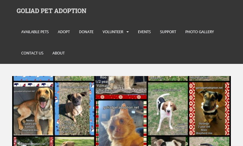 goliadpetadoption.com