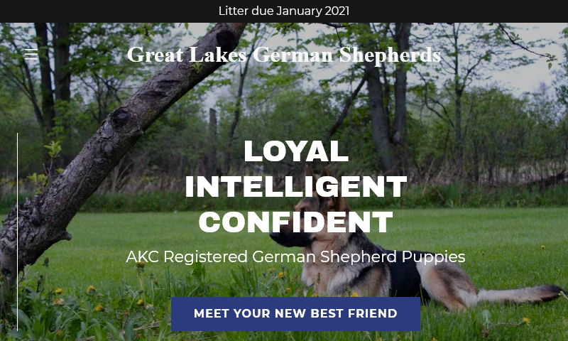 greatlakesgermanshepherds.com