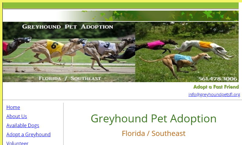 greyhoundpetadoption.com