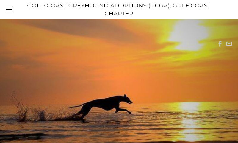 gulfcoastgreyhoundadoption.org