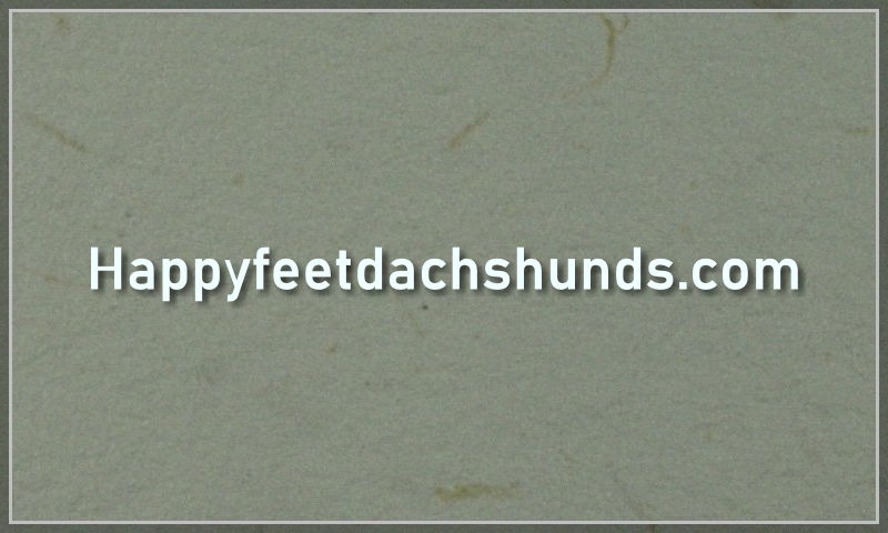 happyfeetdachshunds.com.jpg