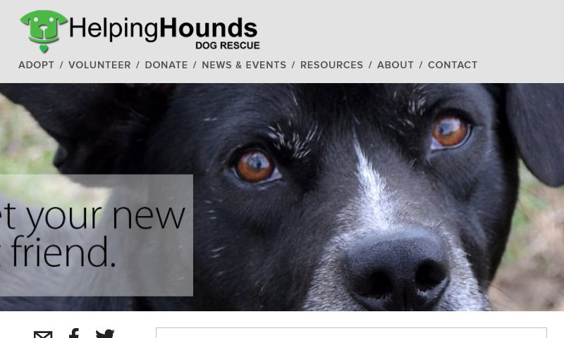 helpinghoundsdogrescue.com