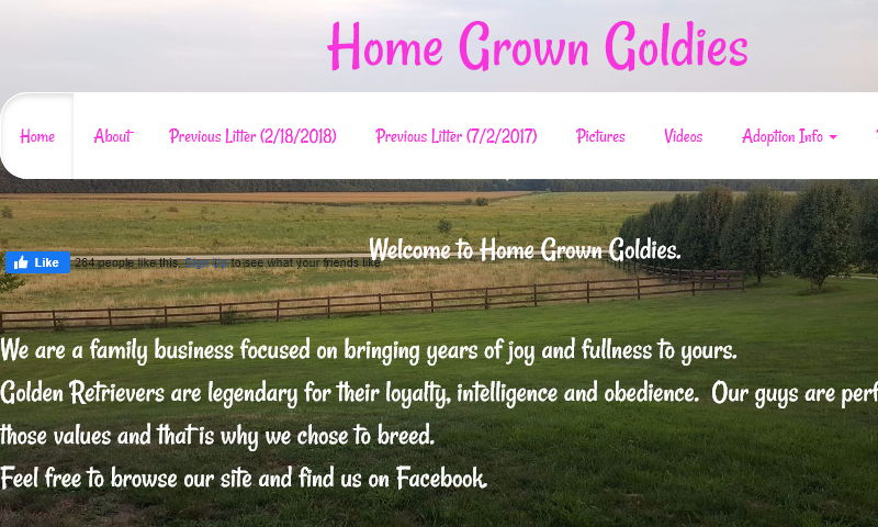 www.homegrowngoldies.com