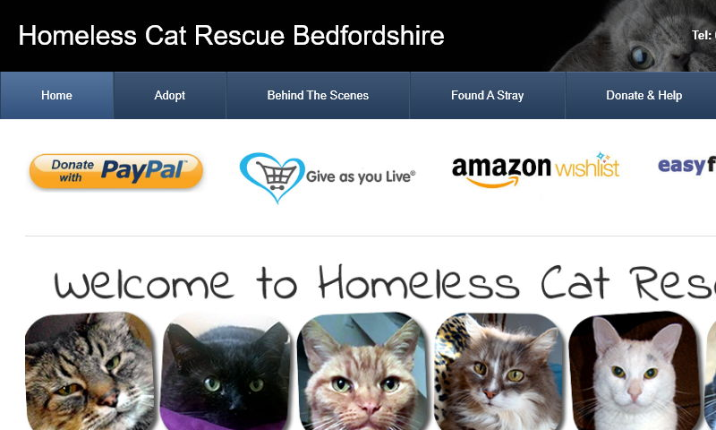 homelesscatrescue.co.uk