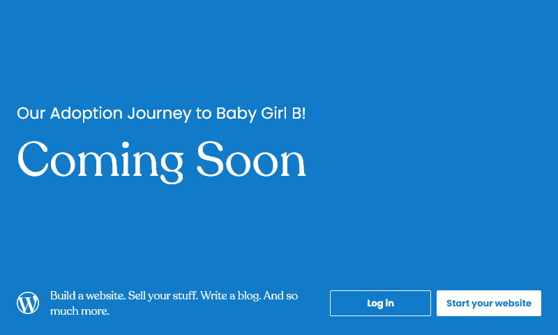 journeytobabybadoption.com.jpg