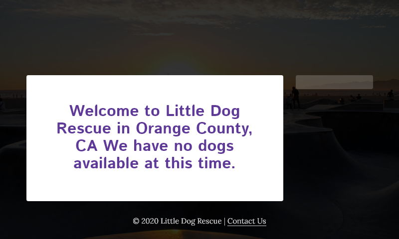 littledogrescue.com