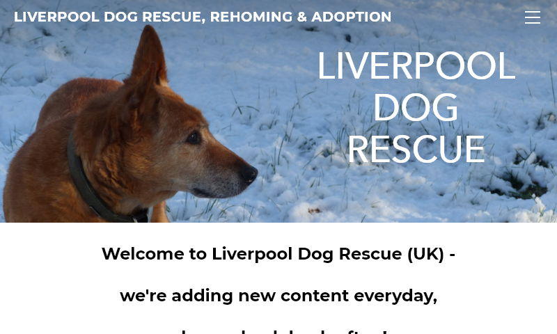 liverpooldogrescue.org