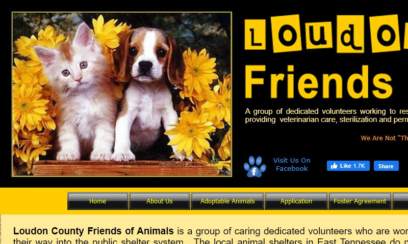 loudoncountyfriendsofanimals.com