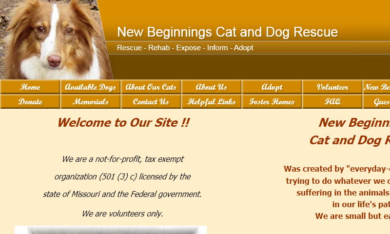 newbeginningscatanddogrescue.com