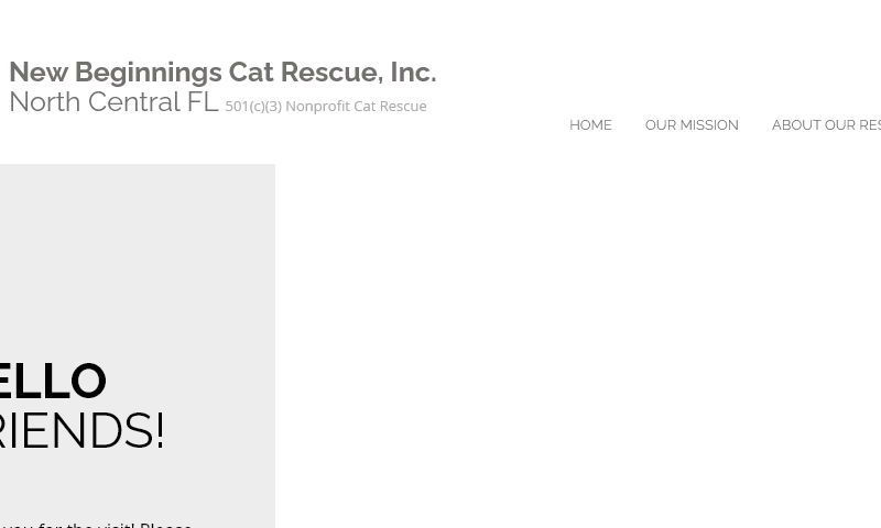 newbeginningscatrescue.com.jpg