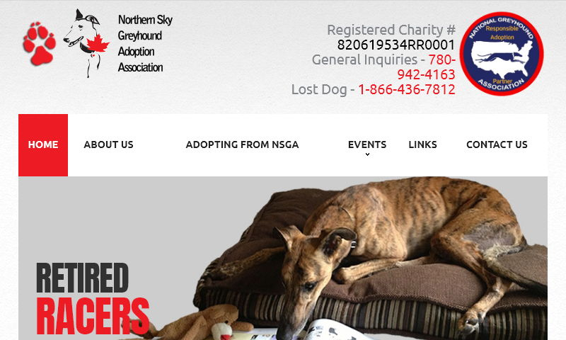 northernskygreyhounds.com