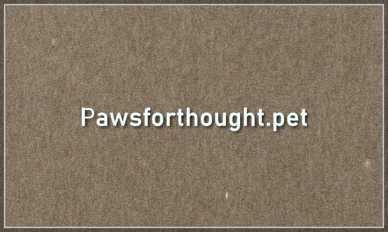 pawsforthought.pet.jpg