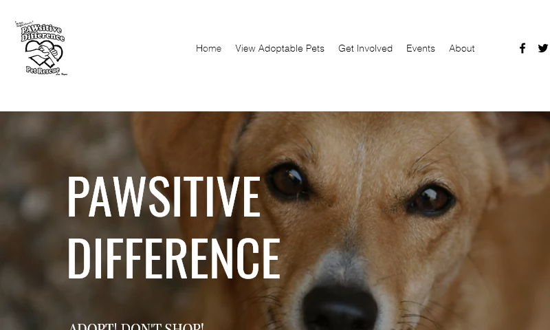 pawsitivedifference.org.jpg