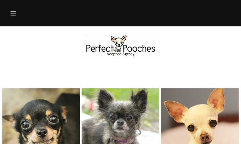perfectpooches.org