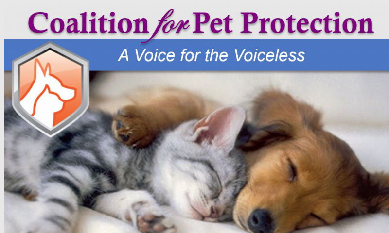 petcoalition.org