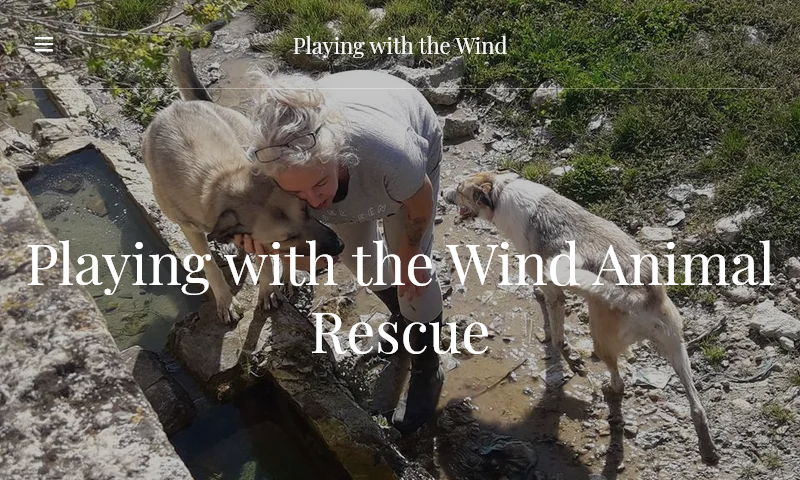 playingwiththewind.org