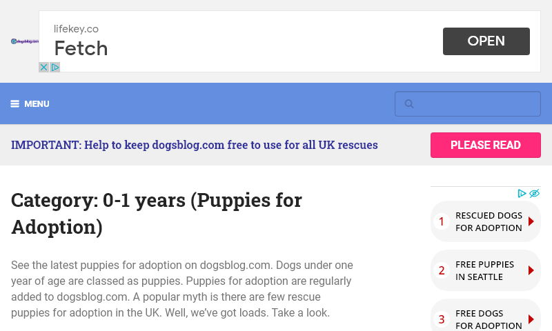 puppyadoption.co.uk.jpg