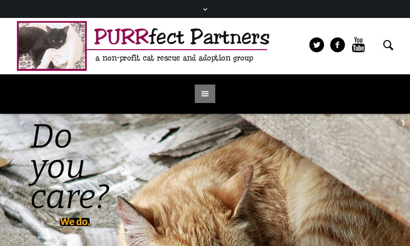 purrfectpartners4cats.com