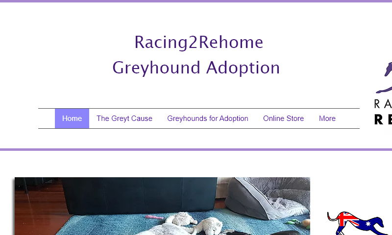 racing2rehome.org