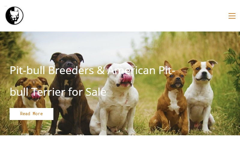 starpittbullpuppies.com