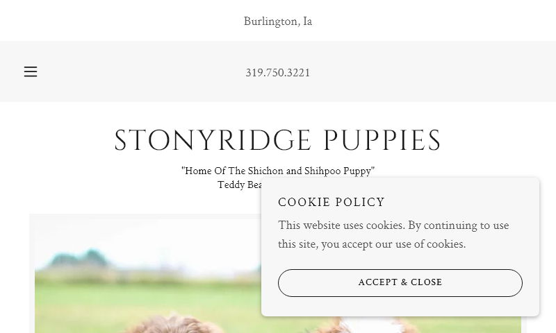 stonyridgepuppies.com