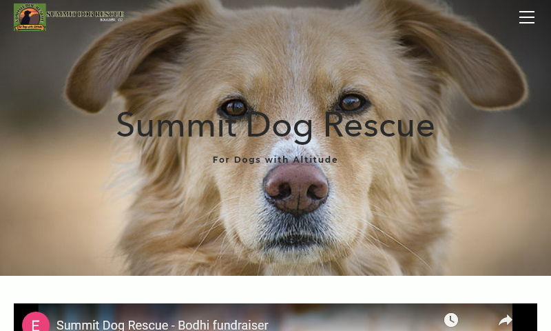 summitdogrescue.org.jpg