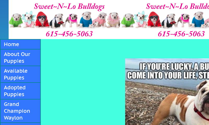 sweetnlobulldogs.com