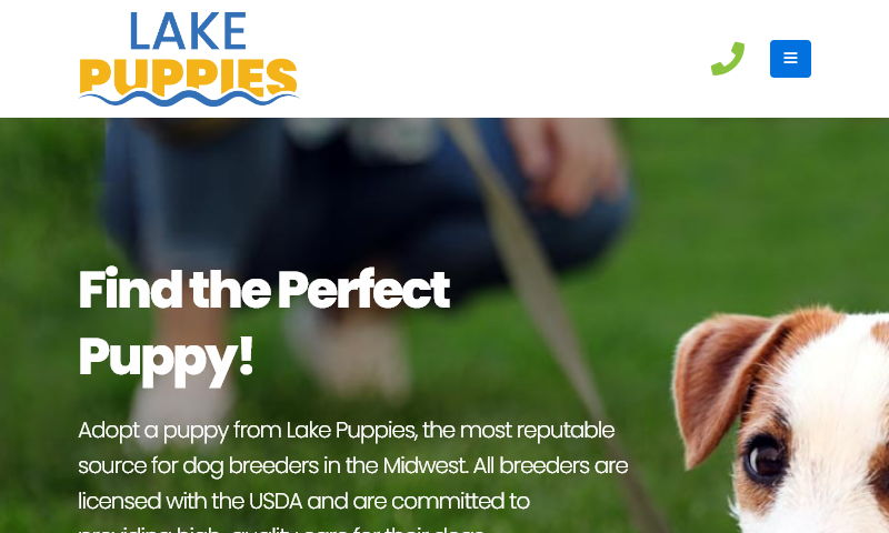 thelakepuppies.com.jpg